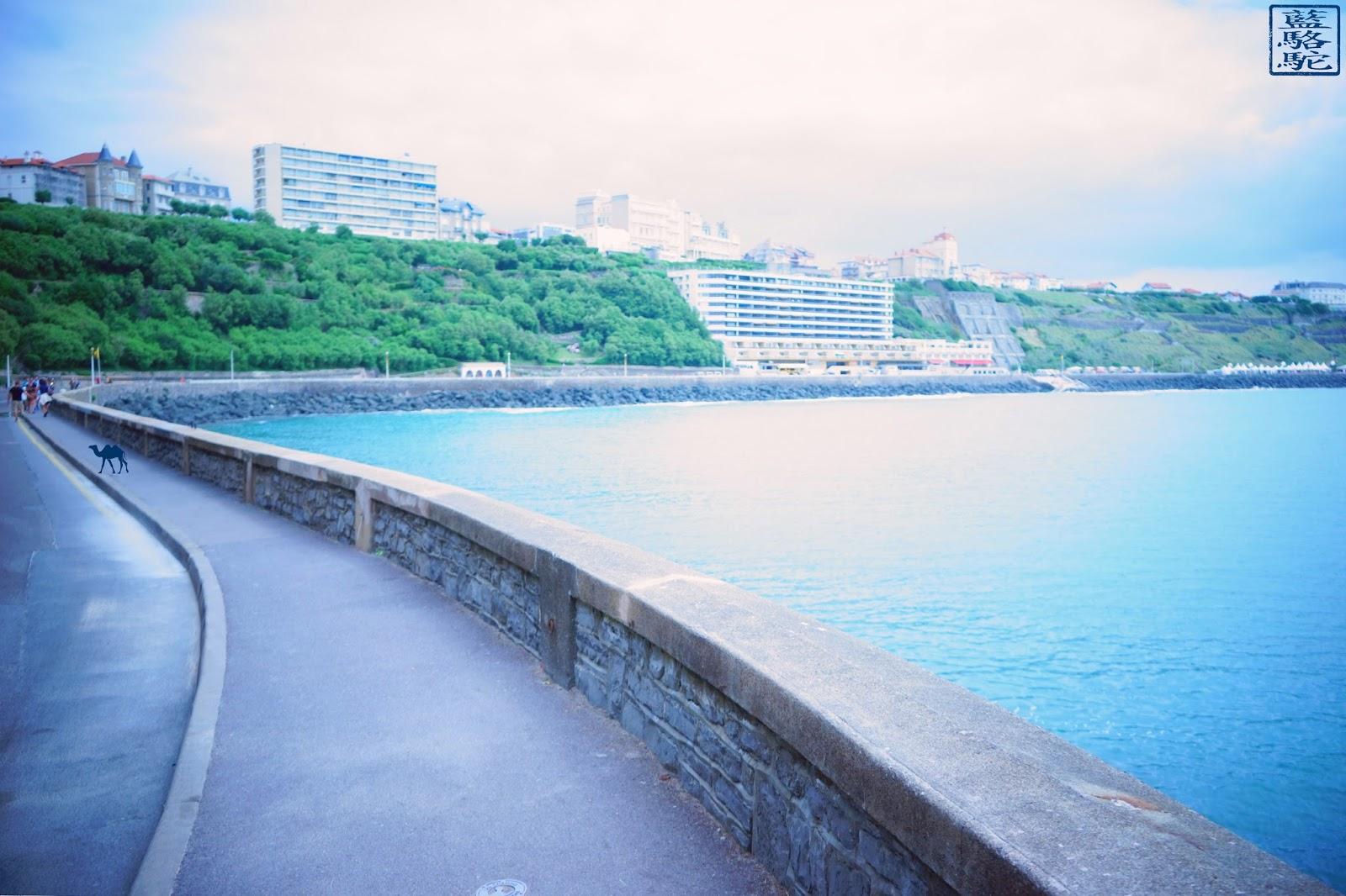Le Chameau Bleu - Biarritz - boulevard du Prince de Galles - France