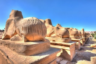 Pilgrim gouges on the buttocks of sphinxes on the Avenue of Sphinxes at Karnak. Photo by Cammyjams [Flickr].