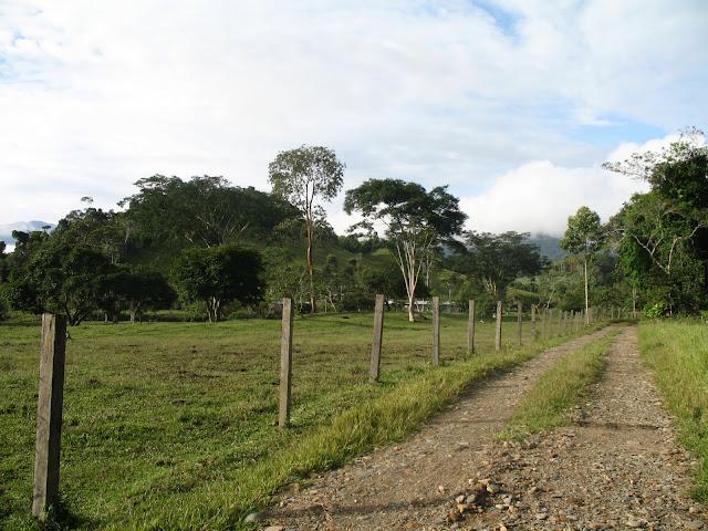 Nacional download parque huascaran ebook