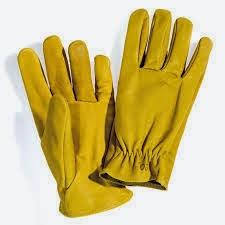 selezione straordinaria lucentezza adorabile più recente Lo SciacquaLingua: Trattare con i guanti gialli