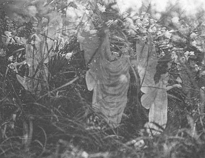 Fotografía 5 - Hadas de Cottingley - Hadas en su baño de sol - controversia - Realidad y Fantasía