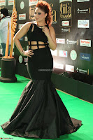 Nikesha Patel in Beautiful Figure Hugging Black Dress  at IIFA Utsavam Awards 2017  Day 2 at  07.JPG