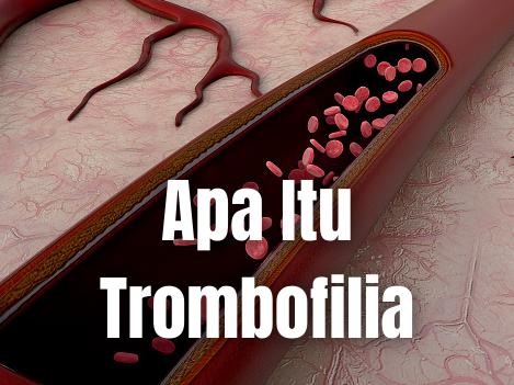 Apa Itu Trombofilia : Pengertian, Tanda dan Gejala, Penyebab, Faktor Risiko Pengertian Trombofilia Trombofilia atau hiperkoagulasi, adalah penyakit yang berhubungan dengan pembekuan darah. Penderita cenderung mudah mengalami pembekuan darah (trombosis).   Bisa menderita trombosis karena diwariskan atau karena memang mengidap penyakit ini. Kadang‐kadang, penyakit ini dapat mengakibatkan komplikasi serius dan mengancam nyawa si penderita.  Tanda dan Gejala Trombofilia Mungkin saja menderita trombofilia (trombosis vena) atau arteri (trombosis arteri) tergantung pada lokasi trombus.   Berbagai gejala yang akan muncul antara lain: Trombosis vena terjadi di pembuluh darah kaki dan menyebabkan pembengkakan, nyeri, kemerahan, serta rasa panas pada kaki.  Trombosis arteri sering terjadi di sekitar pembuluh darah utama (aorta, arteri karotis), menyebabkan gejala stroke seperti bicara melantur, mati rasa, tubuh lemas, hilang penglihatan, dan sulit menelan.   Selain itu, beberapa kondisi juga dapat menyebabkan trombosis dari masalah kehamilan seperti keguguran, kelahiran prematur, serta adanya kandungan antibodi antifosfolipid dalam darah seseorang. Pasien sindrom antibodi antifosfolipid sering mengalami pembekuan darah yang tidak normal.   Penyebab Trombofilia Trombofilia disebabkan oleh mutasi genetik pada beberapa gen yang diwariskan dari orangtua. Jenis yang paling umum adalah faktor mutasi Leiden V.  Jenis lainnya adalah mutasi protrombin, hiperhomosisteinemia, dan peningkatan aktivitas faktor VIII. Protrombin adalah protein yang berperan dalam pembekuan darahHiperhomosisteinemia merupakan suatu kondisi di mana kadar homosistein terlalu banyak dalam asam amino darah.  Kelainan genetik langka lainnya yaitu kekurangan protein C, protein S, dan antitrombin III (protein yang membantu pembekuan darah).   Gangguan ini umumnya berkaitan dengan komplikasi selama kehamilan. Sindrom antibodi antifosfolipid adalah penyebab trombosis paling umum (tidak bersifat turun‐temurun, tetapi d