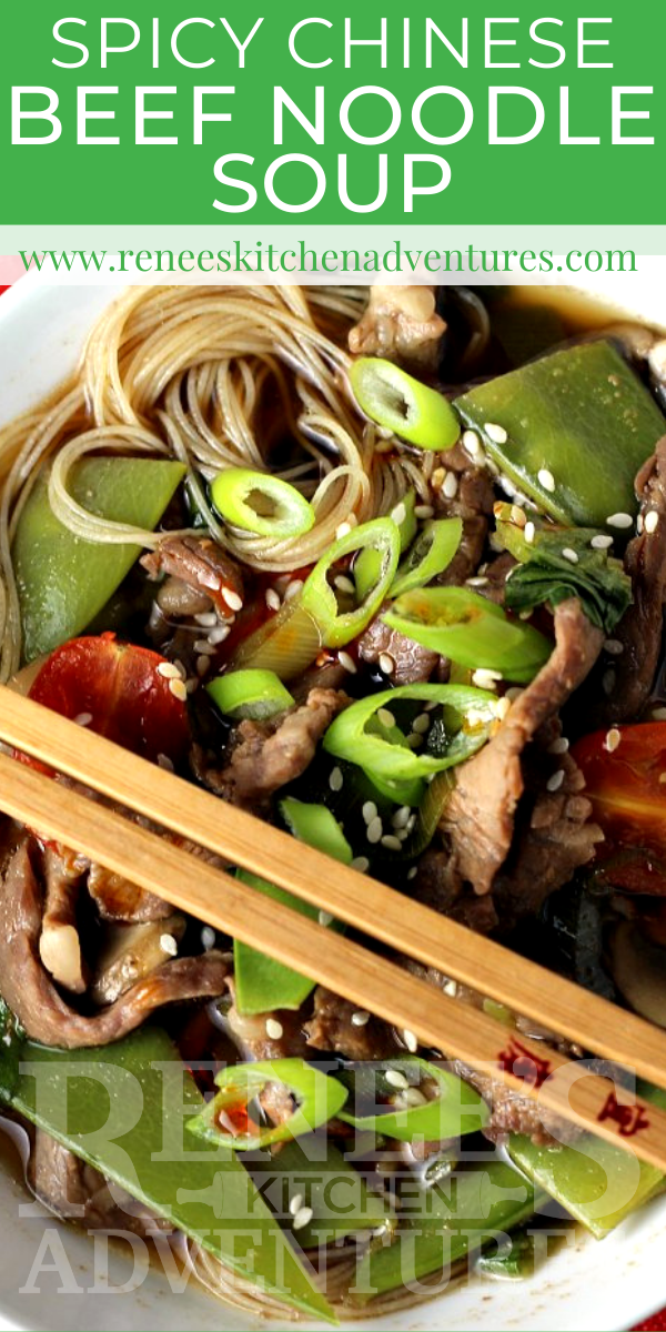 Spicy Chinese Beef Noodle Soup by Renee's Kitchen Adventures pin for Pinterest with overhead image of bowl of soup and text overlay