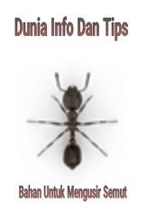 Ini Dia Bahan-Bahan Untuk Mengusir Semut