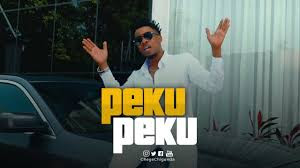 Video | Chege ft Mrisho Mpoto _ Peku peku MP4 | Download