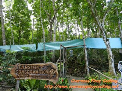 Loboc Tarsier Conservation Park