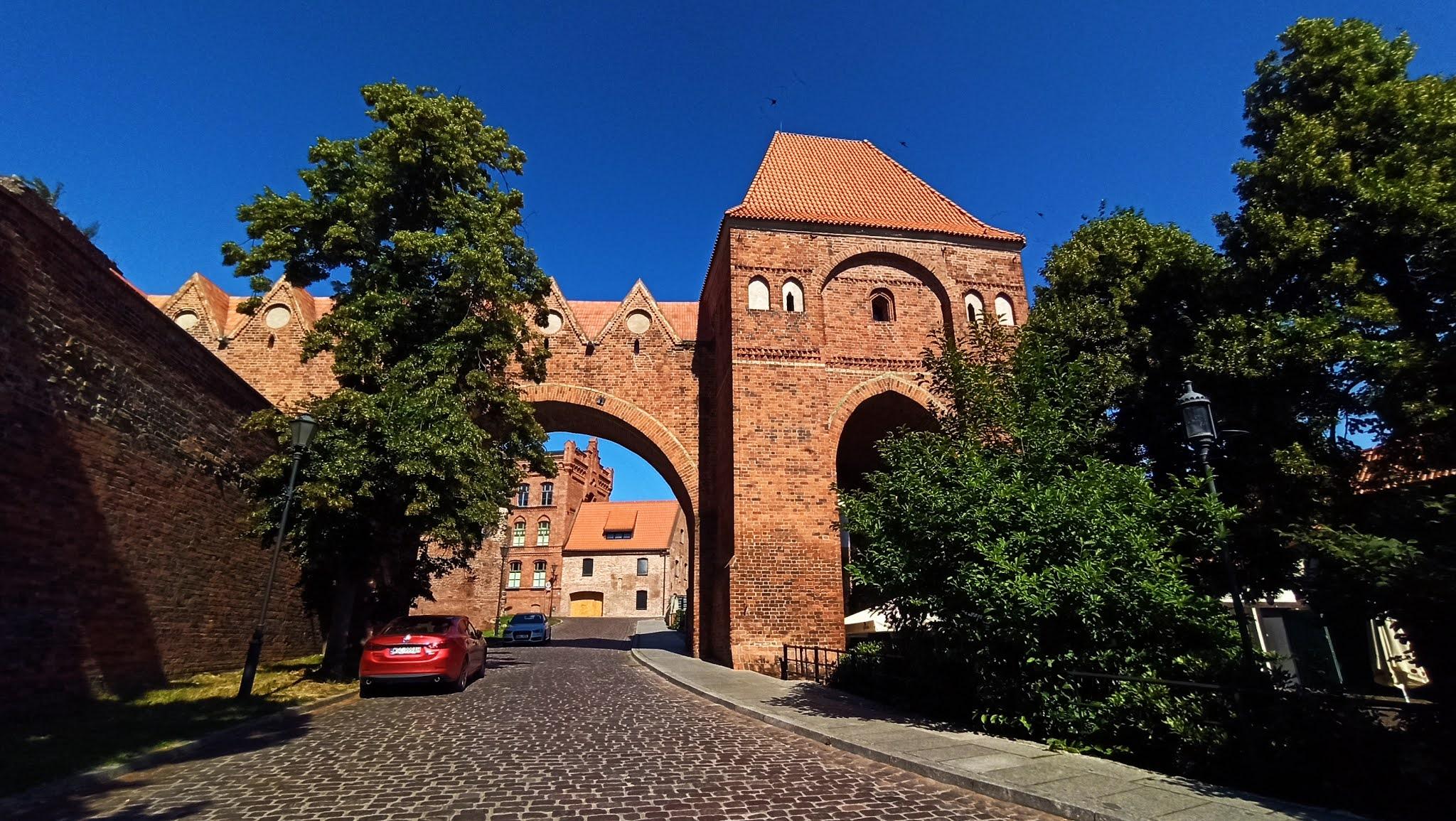 Ruiny zamku w Toruniu