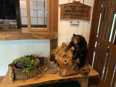 別館山の宿 玄関にある熊の剥製