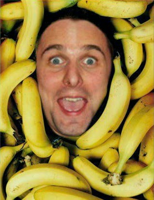 matthew bellamy muse banana bananas