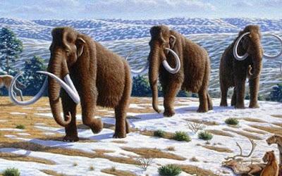 Upaya Kloning Mammoth Sudah Masuk ke Tahap Awal