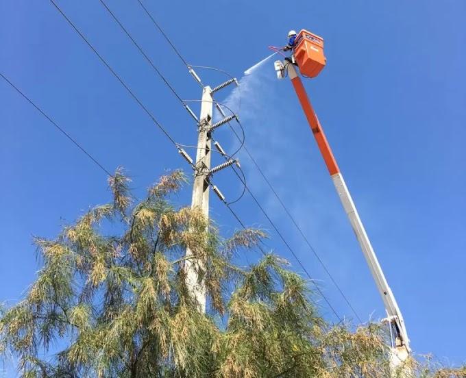 Cosern estende período de lavagem da rede elétrica em Grossos, Tibau, Areia Branca, Serra do Mel e outros 6 municípios