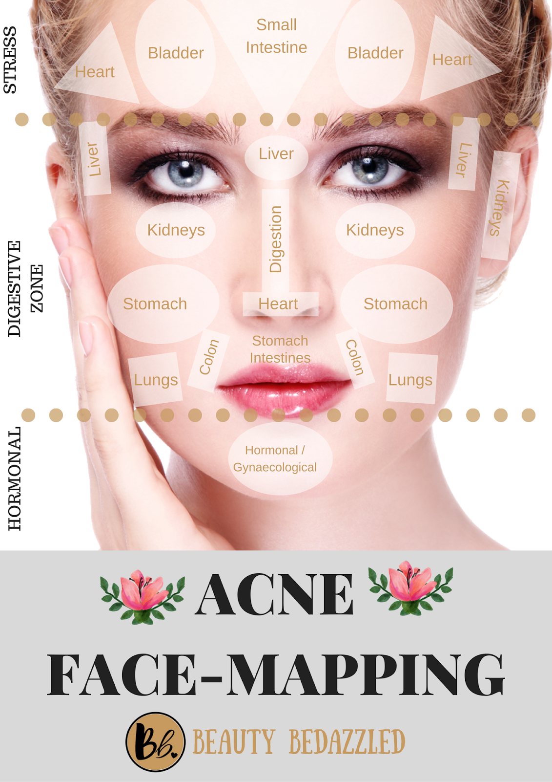 Acne Face Mapping - What does Your Acne Tell YOU? - Beauty ...