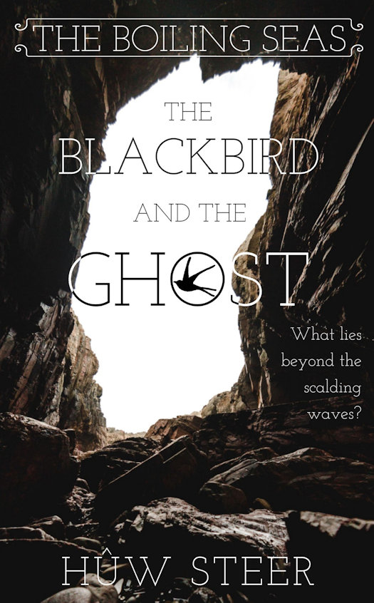 SPFBO 5 Semi-Finalist Review - The Blackbird and the Ghost by Hûw Steer
