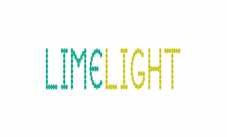 Limelight Jobs Category Analyst