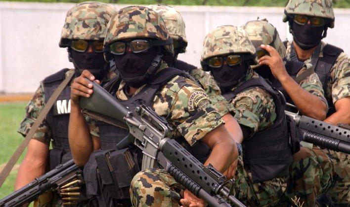 Fuerzas Especiales de la Armada De México: Las Fuerzas
