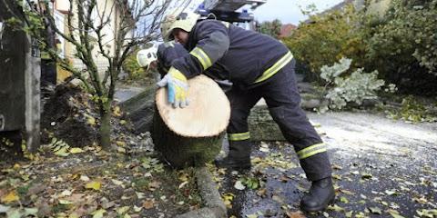 Több mint kétszáz riasztást kaptak a tűzoltók a vihar miatt