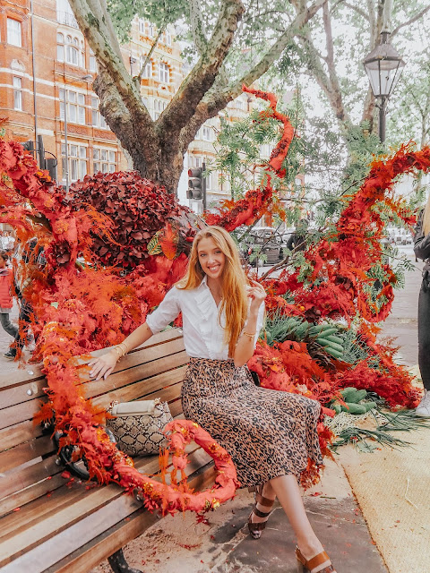 Chelsea in Bloom 2019 Under The Sea Flower Displays