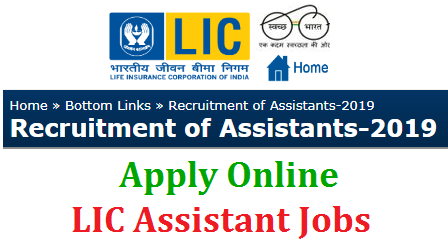 Life Insurance Corporation of India inviting Online Applications from Graduates for the Zonal wise vacancies of Assistants Posts to perform duties as Clrical Staff Cashier Single Window Operator Customer Service Excutives in Branches. AP Telangana LIC Zones Hyderabad Karimnagar Warangal Kadapa Machilipatnam Vizag Nellore Rajahmandry Assistant Posts Vacancies Submit Online Application Form for Clerks Cashier Single Window Operator and Customer Service Excutives lic-assistant-recruitment-2019-for-clerks-cashier-customer-service-excutive-apply-online