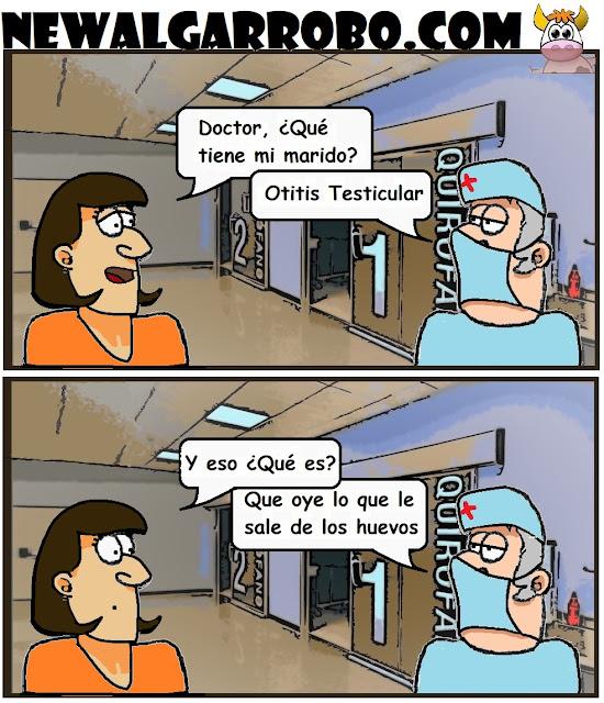 otitis testicular