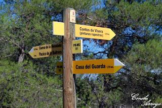 Indicaciones de las diferentes rutas que se pueden realizar en el Monte Arabí