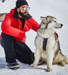 Ranveer Singh With Dog