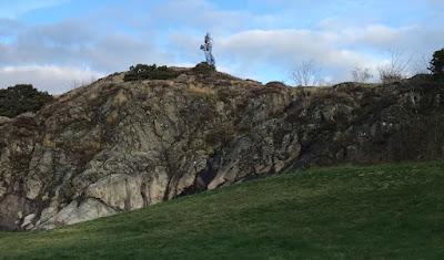 Skulpturen Syrian Horse sedd från gräsäng vid Skeppsviken