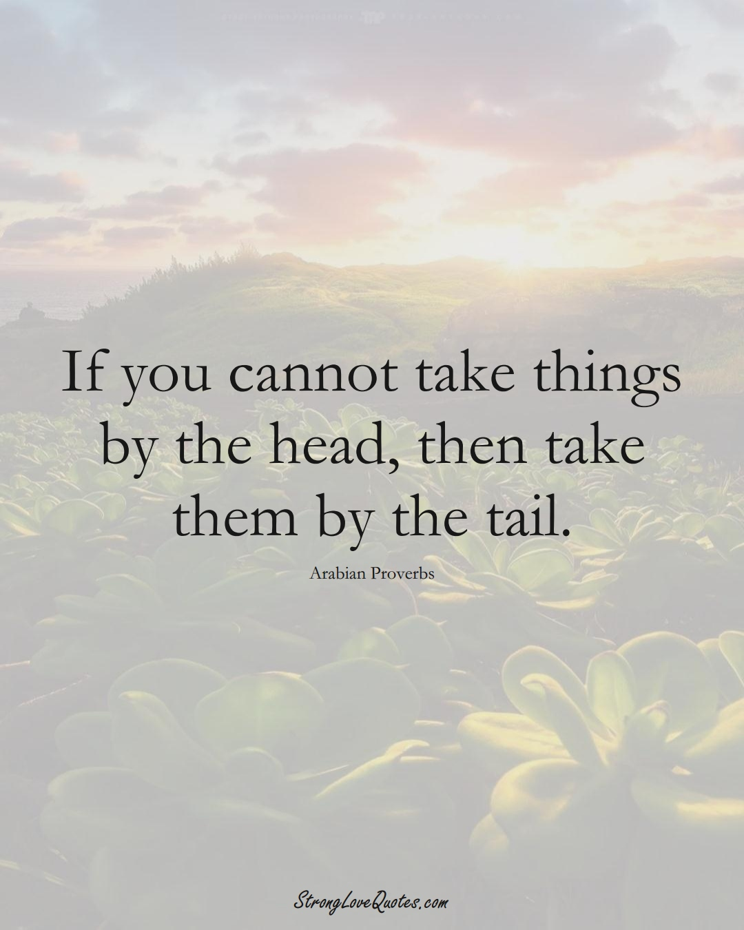 If you cannot take things by the head, then take them by the tail. (Arabian Sayings);  #aVarietyofCulturesSayings