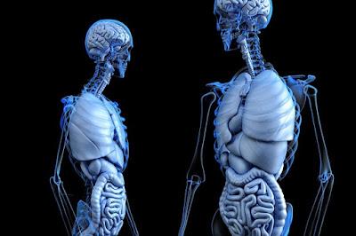 Abses Paru – Gejala, Penyebab, Diagnosis, Dan Mengobati