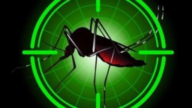 Πρωτοποριακό σύστημα προειδοποίησης για τον ιό του Δυτικού Νείλου