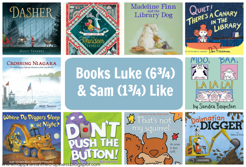http://happinessinthecrapiness.blogspot.com/2019/12/books-luke-6-and-sam-1-like.html