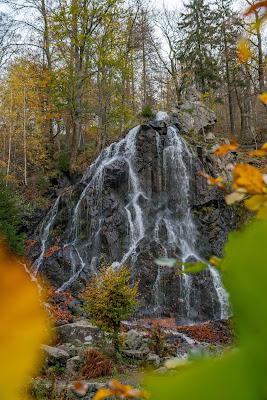 Herbstwanderung im Harz | Torfhaus – Eckerstausee – Bad Harzburg 15