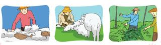 Petani dan peternak www.simplenews.me