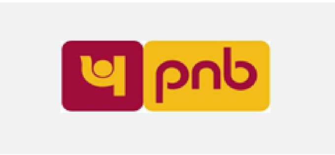 सार्वजनिक क्षेत्र के बैंकों में पीएनबी को मिला सर्वश्रेष्ठ बैंक का दर्जा