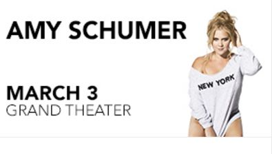 Amy schumer foxwoods resort casino march 3 free to play fps 2015