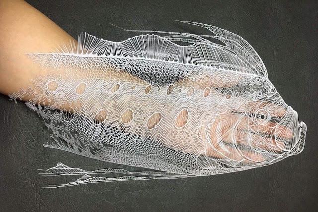 Terlihat Seperti Gambar Hewan Laut Biasa, Namun Bila Dilihat Lebih Detail Anda akan Terkejut!