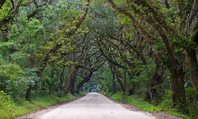 Edisto Island, Caroline du Sud, USA