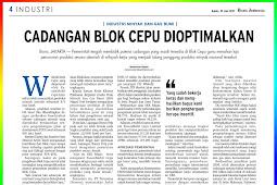 Cepu Block Backup Optimized
