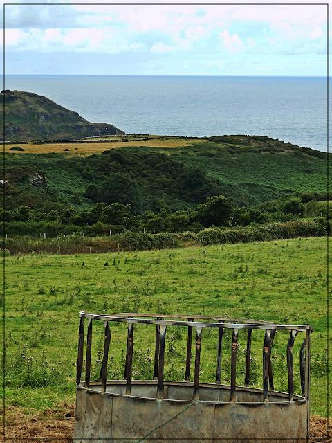 Views of sea and countyside walking to St.Nectan's Waterfall, Cornwall