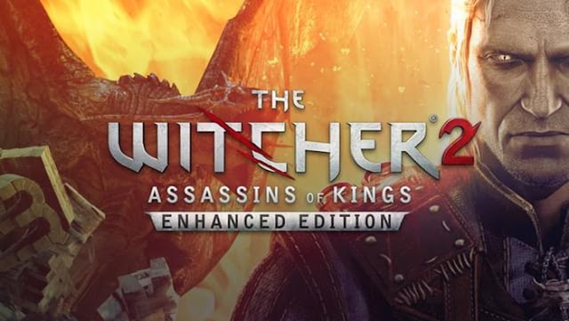 the witcher 2 apunkagames