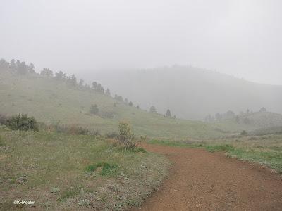 Northern Colorado foothills