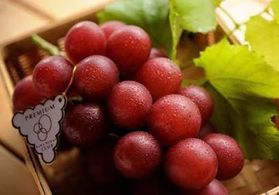 buah anggur ruby roman