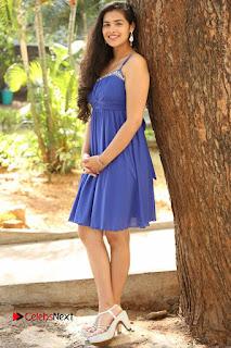 Actress Prasanna Stills in Blue Short Dress at Inkenti Nuvve Cheppu Movie Platinum Disc Function  0201.JPG