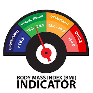 BMI Ranges for Adults