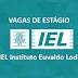 Vagas de Estágio - IEL Instituto Euvaldo Lodi