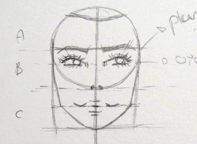 Dibujo de pómulos, mandíbula y mentón