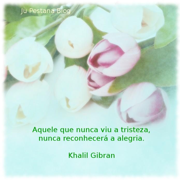 Frase De Khalil Gibran Ju Pestana 2