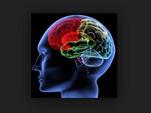 Waspadai Timbulnya Beberapa Gejala Kanker Otak Berikut!