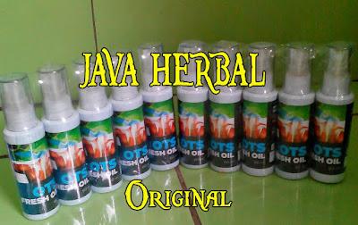 obat herbal untuk mengobati encok rematik nyeri tulang