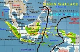 Peta Garis Wallace
